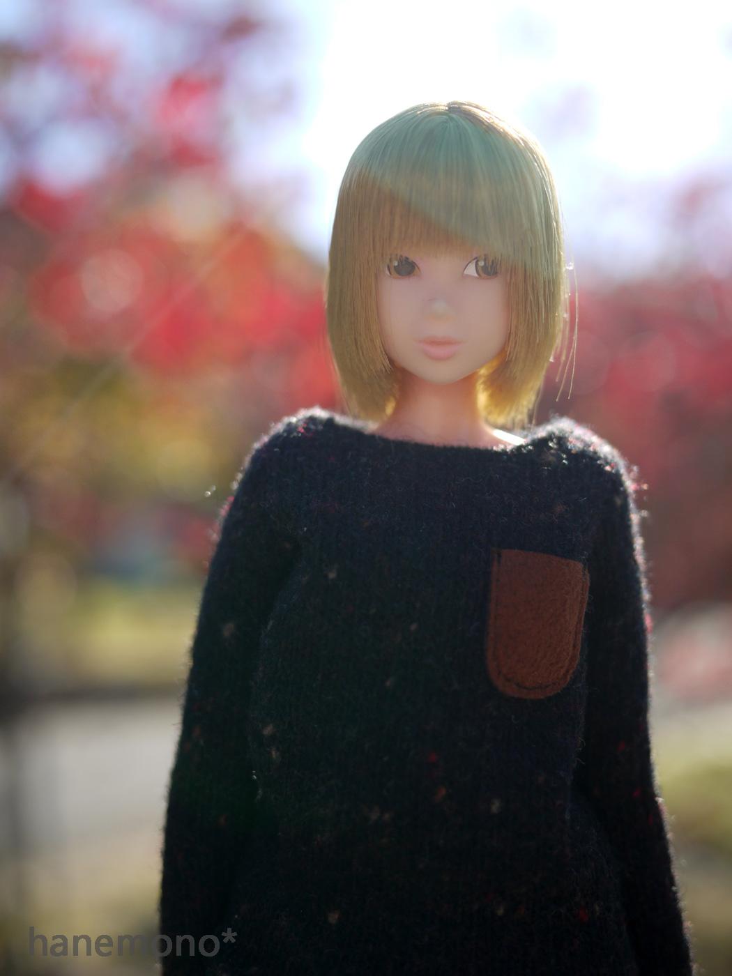 http://momoko.so-i.net/img/141127b10lc4.jpg